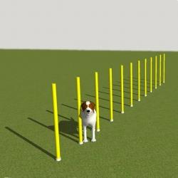Slalomas šunims